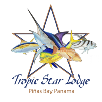 tropic-star-logo-blue-gold-04